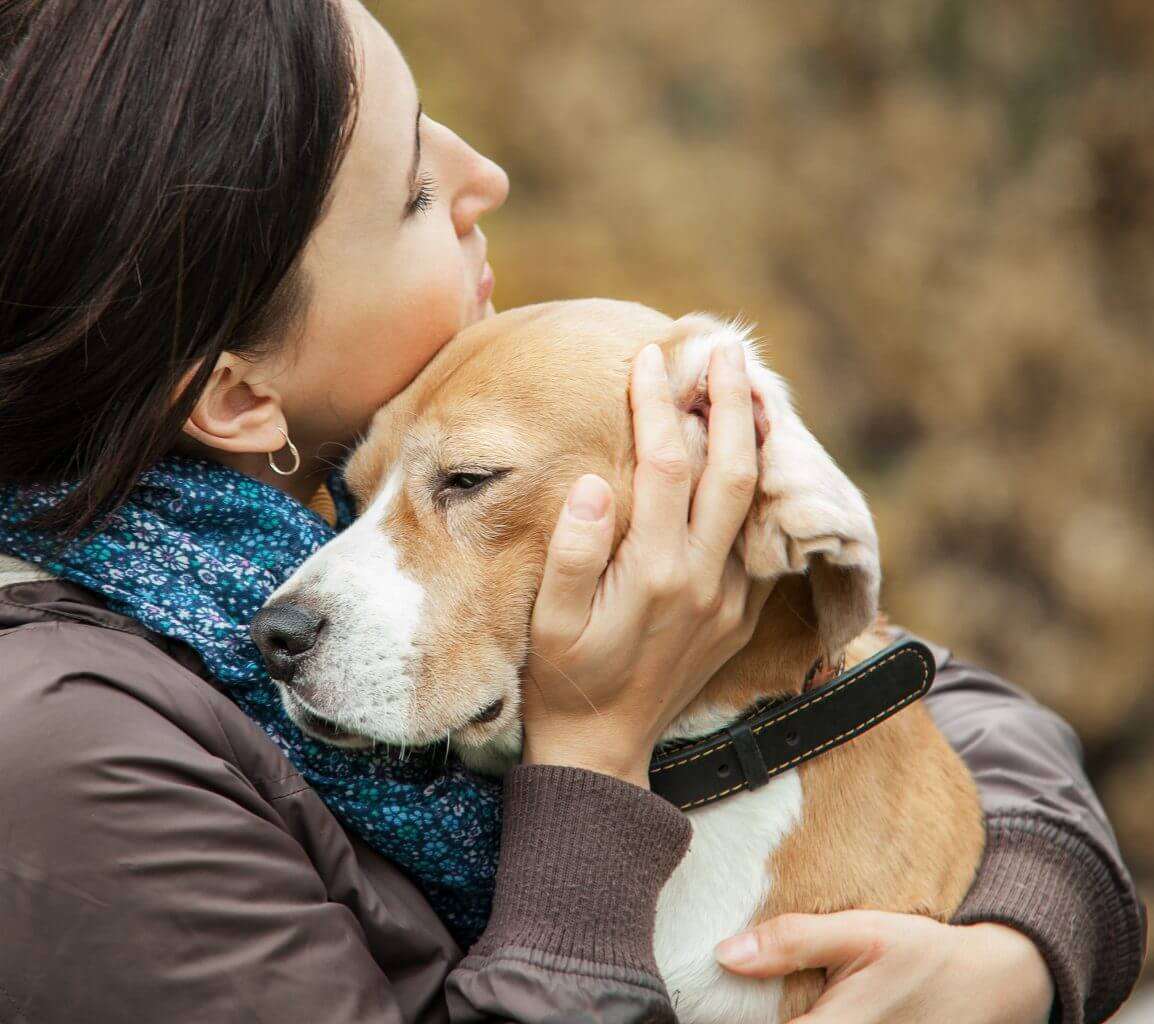 CBD for dogs. Top 10 reasons to give your dog CBD. CBD oil for dogs joint pain. CBD oil For dogs with seizures. CBD oil for dogs with cancer. CBD oil for dogs. CBD dosage for dogs. Is CBD safe for dogs.