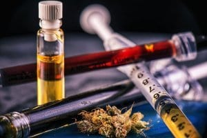 Hemp oil for dogs with cancer
