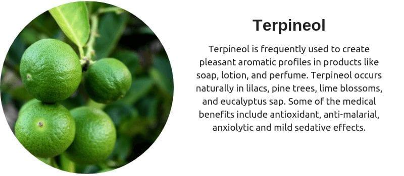 Cannabis terpenes terpineol