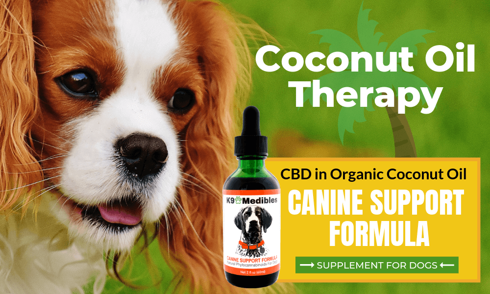 Coconut oil for dogs. Coconut oil for dogs benefits.