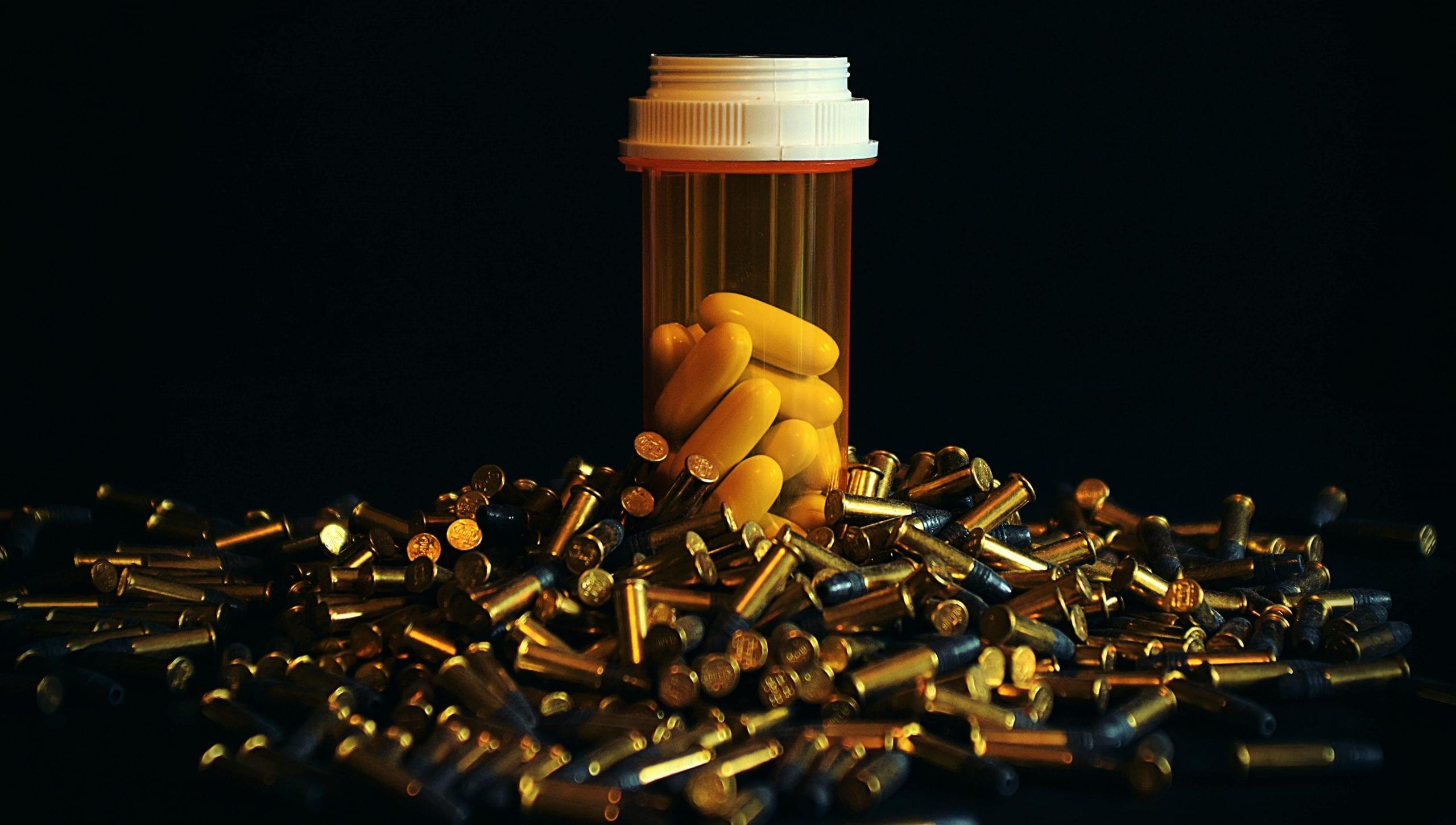 Rimadyl overdose