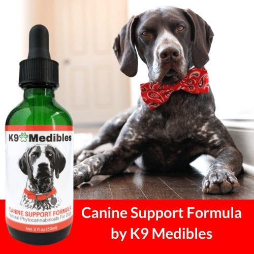 Enter to win our Valentine's Day Contest of a free Bottle of Canine Support Formula CBD oil for dogs