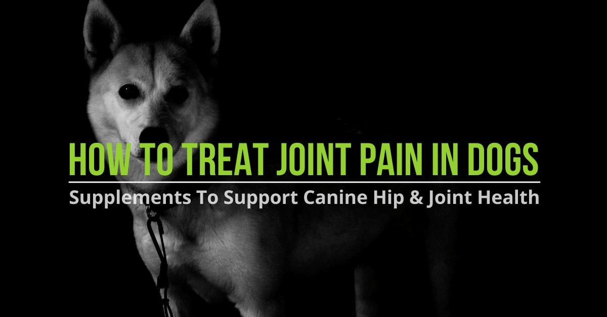 Supplements for dog joints