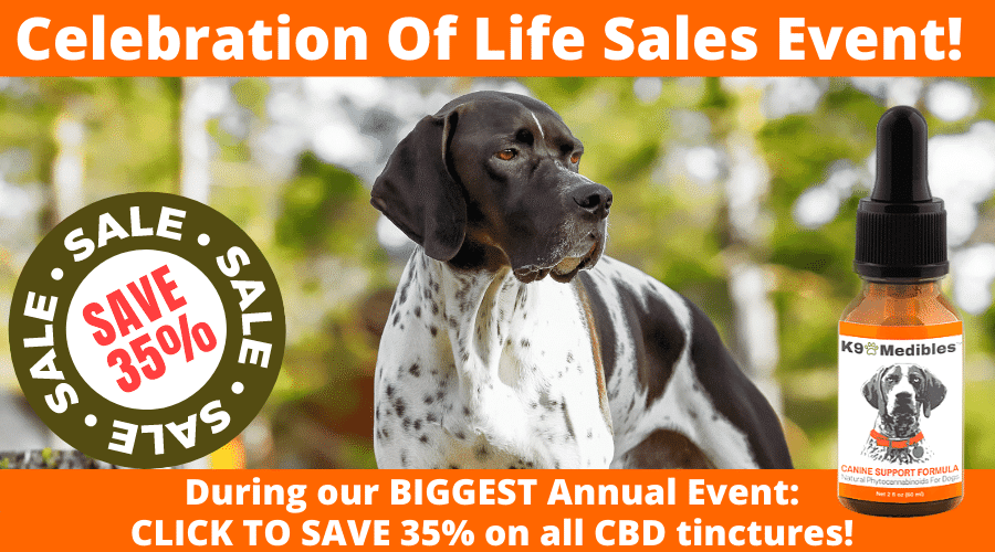 Click to save 35% off our CBD oil for dogs during our annual sales event!