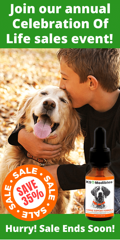 Save 35% on our CBD oil for dogs during our Celebration of Life Sale!