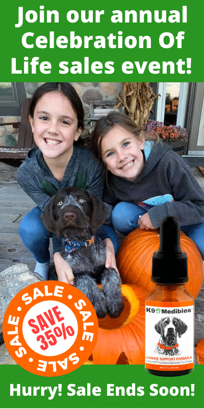 Shop our Annual Sales Event! Save 35% on our CBD Oil for your dog!