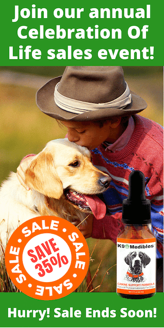Save 35% on our CBD Oil for dogs during our annual sales event