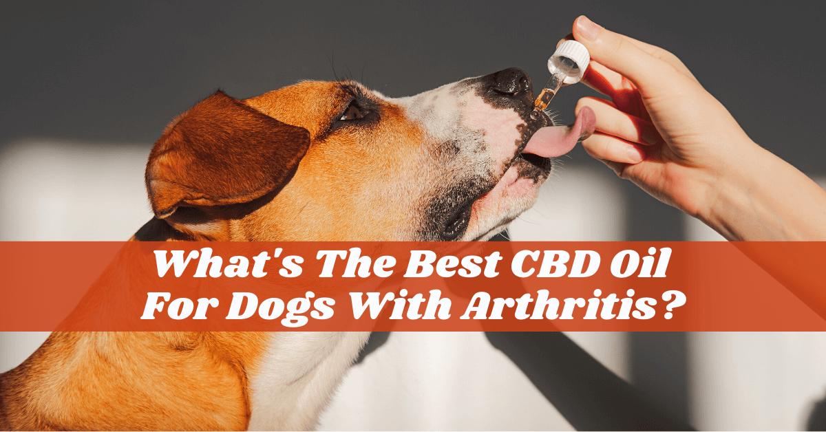 CBD oil for dogs arthritis